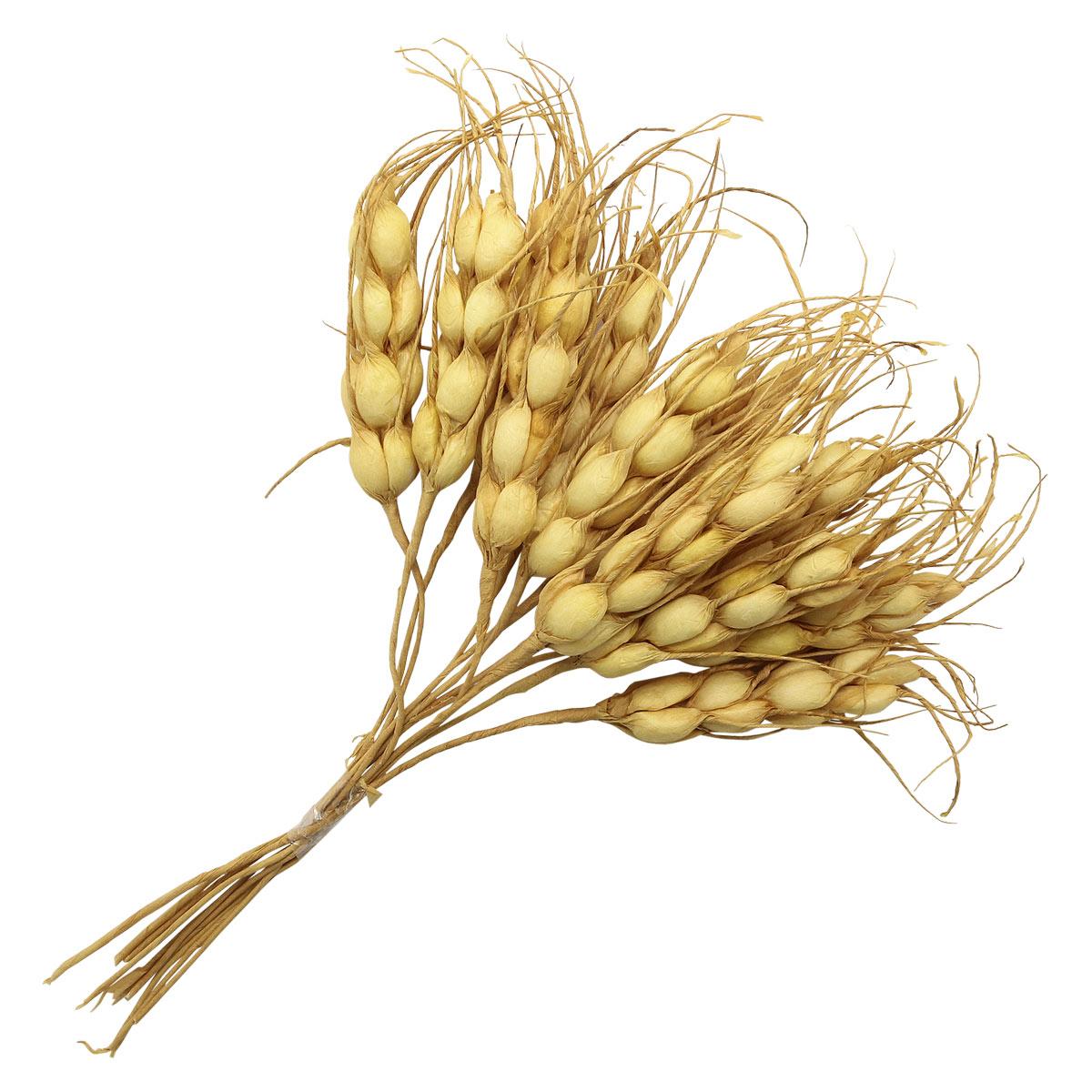 AR555 Букетик декоративный пшеницы из 10 колосков, цв. натуральный 15см