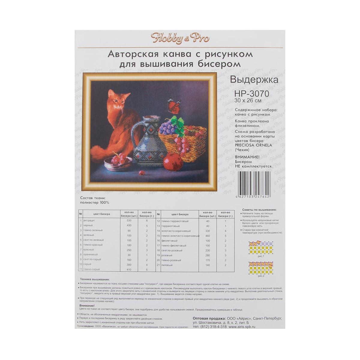 НР-3070 Канва с рисунком для вышивания бисером 'Выдержка' Hobby&Pro 30*26см