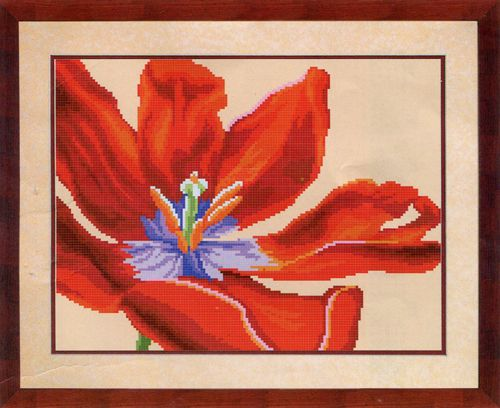 СБ-1020 Канва с рисунком для вышивания бисером 'Красный тюльпан' Hobby&Pro 30*23см